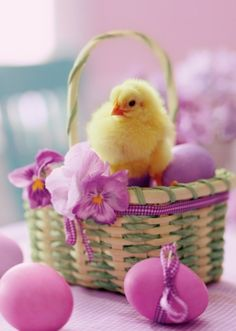 Happy Easter, girls ♥ none of us will probably be here all that much today so let's just do EASTER and SPRING IN COLOR ~ I hope you all have a wonderful day with your family and friends!  Thank you for being here in light of all the problems we are seeing ♥ Love, Momma C
