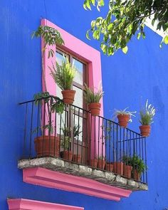 House Exterior Colors Blue Window 65 Ideas For 2019 Ventana Windows, Murs Roses, Fachada Colonial, Mexican Colors, Mexico Style, Jolie Photo, Christmas Aesthetic, Spanish Style, Exterior Colors