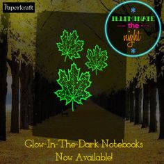 Our range of glow-in-the-dark notebooks now available!