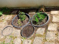 Un jardin aromatique enterré - Le Défi Potager #7 : l'accélération ! Une Semaine à Paris Foret.