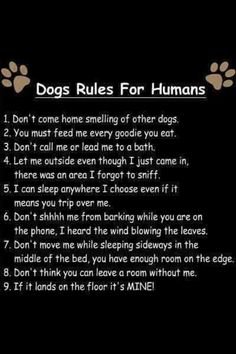 Dog rules for humans