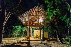 Treehouse, Back of Beyond Pidurangala