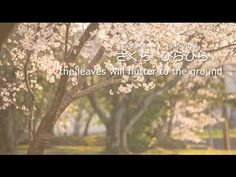 Ailee – SAKURA (Full Ver.) [Lyric Video]