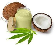 Cannabis-Kokosöl-Rezept gegen Schmerzen, Übelkeit, Krampfanfälle und mehr… | Alpenschau.com