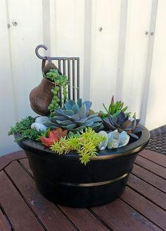 Creative succulent arrangement by Stacey Rundell