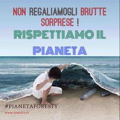 Aggiungiamo una R alla famosa regola delle 3R: Riduci Riusa Ricicla e Rispetta! Con pianetaforesty puoi! www.foresty.it