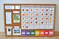 Montessori Curriculum for Toddlers