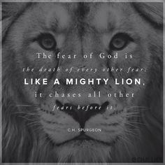 The fear of God is the death of every other fear; like a mighty lion, it chases all other fears away - Spurgeon