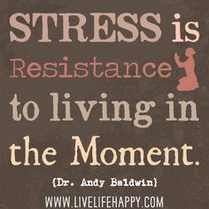 Stress is resistance to living in the moment. -Dr. Andy Baldwin