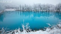 "The blue pond with snow #KentShiraishi - Biei in HokkaidoJapan. This pond is a very famous ""blue pond"" but it is already covered with snow. This photo's colors is almost same colors that seen in my eye. Thank you! Kent Shiraishi"