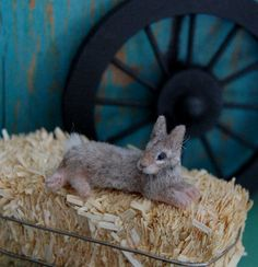 Realistic Cottontail Rabbit Dollhouse Miniature 1:12 scale Handmade by Reve