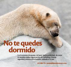 """Campañas de #Publicidad y #Marketing, """"No te quedes dormido"""", La Lata de Navarra ! Polar Bear, Marketing, Tin Cans, Advertising, Creativity"""