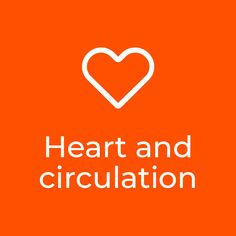 16 Best Heart and circulation images in 2018 | Your heart