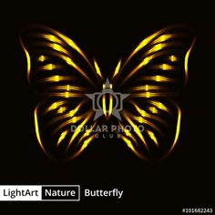 https://www.dollarphotoclub.com/stock-photo/Butterfly silhouette of lights on black background/101682243 Dollar Photo Club millions of stock images for $1 each