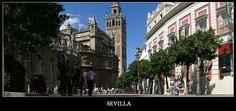 Sevilla - siviglia, Sevilla