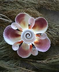 A10 Natural Sea Shell Christmas Ornament with built in LED Light (batteries are replaceable). available at our webstore $19.00   www.homebele.com.au also available in matching door wreaths, table tree cones.