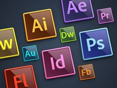 Adobe Creative Suite: Illustrator and InDesign are programs i have used…