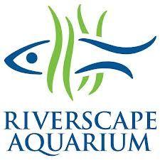 aquarium logo - Google Search