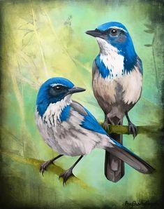 Birds — Amy Shawley Paquette