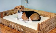 Try to attempt this design of recycled pallet dog bed and also, collect the wood pallets which are in good condition.