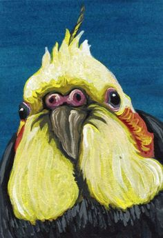 Buy ACEO ATC Original Cockatiel Pet Bird Art-Carla Smale, Gouache painting by carla smale on Artfinder. Discover thousands of other original paintings, prints, sculptures and photography from independent artists.
