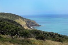 Views of the beautiful west coast of New Zealand, located around the Raglan Area