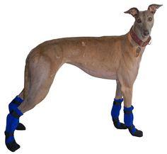 GREYHOUND Dog Booties. $              39.00, via Etsy.