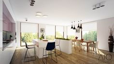 Kitchen and dinning area with flower pot