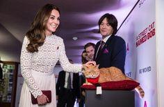 Kate trifft Kater: Die Herzogin scheint dem Frieden nicht ganz zu trauen. Doch Bob bleibt ganz Medienprofi. Foto: Getty Images