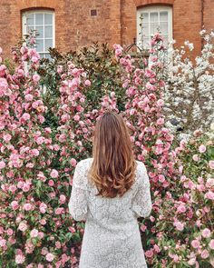Curly hair _________________________________ Tiger eye hair, sombre hair, curls, camelias, white lace dress, pink flowers background Sombre Hair Color, Greenwich Park, Magnolia Trees, Long Winter, Flower Backgrounds, Morning Light, Winter Season, Pink Flowers, White Lace