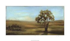 Panoramic Field I  Fulgrum Gallery