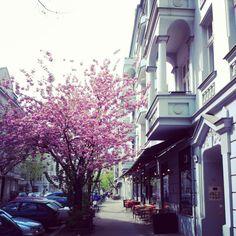 Berlin Prenzlauer Berg 1st May