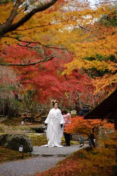 Photo Shoot Among the Fall Colors at Shouzan in Kyoto. Heading to the Next Location. http://regex.info/blog/2010-11-29/1672