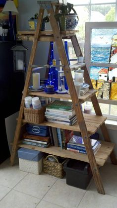 Free ladder and lumber turned shelf. shop or for horse stuff. Such a wicked idea for storage.