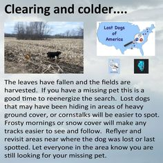 Clearing and colder... Find more tips to help you find your dog at lostdogsofamerica.org