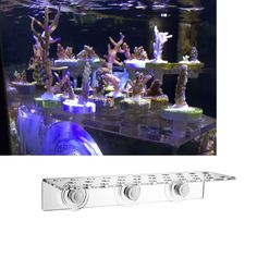 Acrylic  sps coral frag 32 holes bracket nano coral reef holder with 32 bases for marine aqaurium
