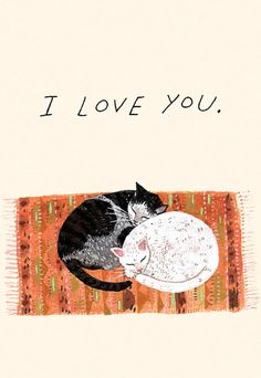 LE LOVE BLOG LOVE QUOTES ADVICE SUBMISSIONS STORIES ART ILLUSTRATION ART ILOVE YOU CUDDLING CUDDLE CATS Becca Stadtlander