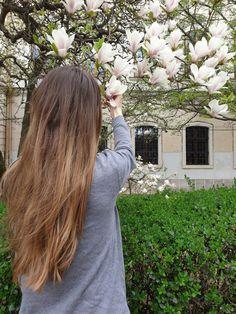My Photos, Long Hair Styles, Beauty, Beleza, Long Hairstyle, Long Hairstyles, Long Hair Cuts, Long Haircuts, Long Hair Dos