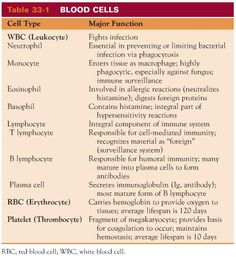 Blood Cell Chart- so I know what the dr's & lab techs are talking about.