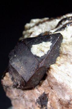 Homilite, Ca2(Fe++,Mg)B2Si2O10 , Stoksund, mellan Arø, Langesundsfjord, Norway. Crystal 1,3 cm Collection/Copyright: Michael K.