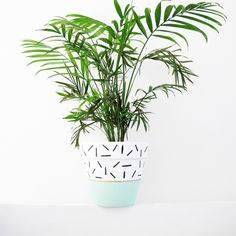 Hand Painted Mint Dash Plant Pot - 15cm by ThisWayToTheCircus on Etsy https://www.etsy.com/listing/274108724/hand-painted-mint-dash-plant-pot-15cm
