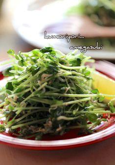 豆苗としらすの胡麻ごまサラダ。 by abichi [クックパッド] 簡単 ... Seaweed Salad, Food And Drink, Cooking, Ethnic Recipes, Japan, Kitchen, Japanese Dishes, Japanese, Cuisine