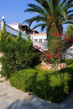 hotel on Skopelos Island, Skopelos Greece, Skiathos, What A Wonderful World, Beautiful World, Amazing Photos, Cool Photos, Ancient Greek Theatre, Ancient Ruins, Thessaloniki
