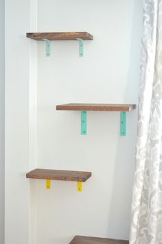 Cat Shelves (yes, you read that right) – Plaster & Disaster - Elizabeth A - Cat Shelves (yes, you read that right) – Plaster & Disaster Shelves for cats -- Plaster & Disaster -