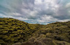 Moss And Clouds In Iceland