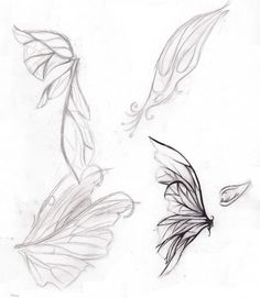 Fairy Wings Drawings - Bing Images