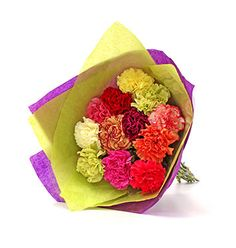 Colourful Carnation Bouquet from £19.99