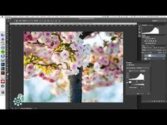 Cómo crear un efecto de luz solar con Photoshop