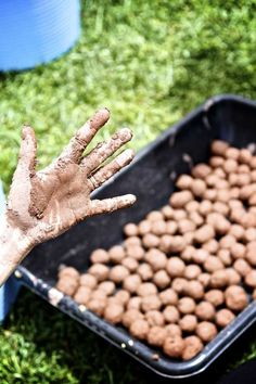 Making Seed Balls | About 30 SEED BALLS:  One and 1/4 cup of dry and finely ground natural clay. About 3/4 cup of dry organic compost. About 1/3 cup of assorted seeds, wildflowers are best, but be sure that you don't include seeds of invasive plants. #science #seeds #scouts