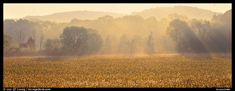 Sunrays in distant mist above field. Cuyahoga Valley National Park,Part of gallery of color pictures of US National Parks by professional photographer QT Luong, available as prints or for licensing. Cuyahoga National Park, Panoramic Pictures, License Photo, Ohio Usa, Us National Parks, Picture Photo, Mists, Country Roads, Landscape